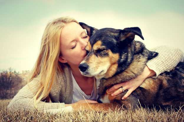 Rehoming a Rescue Dog