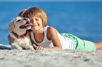 18 Things to Know Before Adopting a Dog